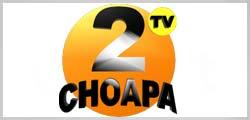 tv 2 choapa
