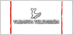 yubarta-television-Universidad-del-Pacifico-chile